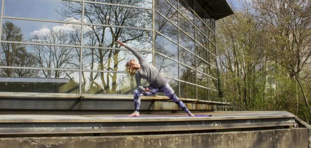 Dynamic Yoga (D./ENG.)