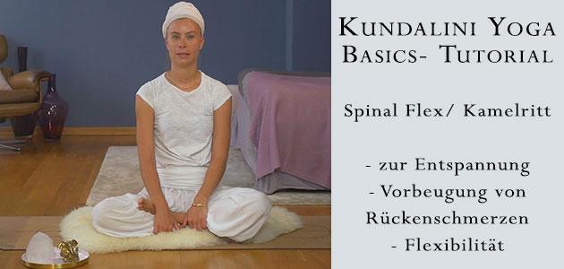 Spinal Flex - Kamelritt - Yoga-Tutorial - Yogakreuzberg mit Daljeet kaur